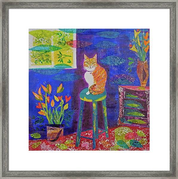 Ginger The Cat Framed Print