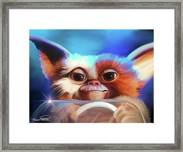 Gizmo Framed Print