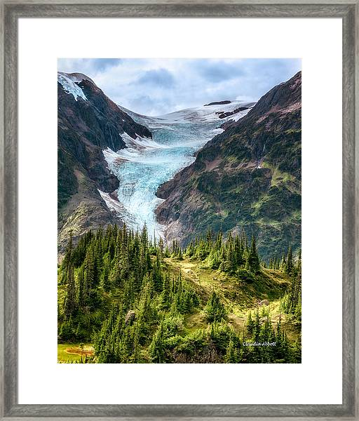 Framed Print featuring the photograph Glacier And Alpine Meadow by Claudia Abbott