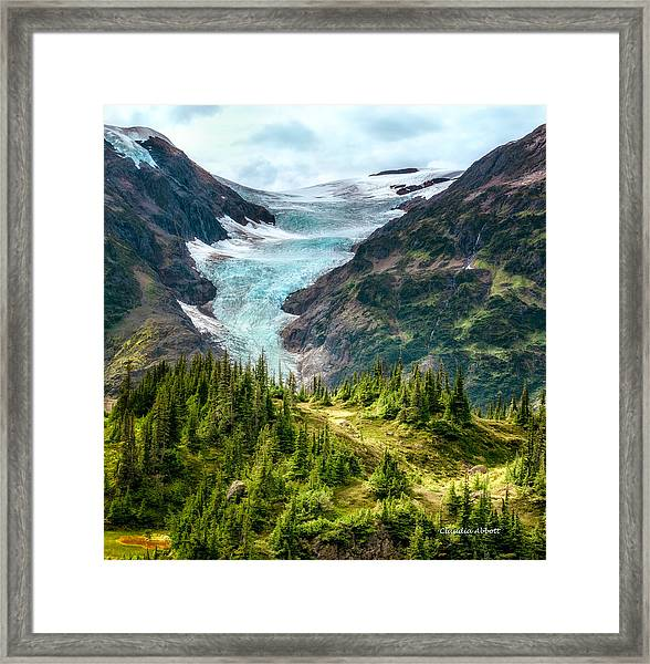 Framed Print featuring the photograph Glacier In An Alpine Meadow by Claudia Abbott