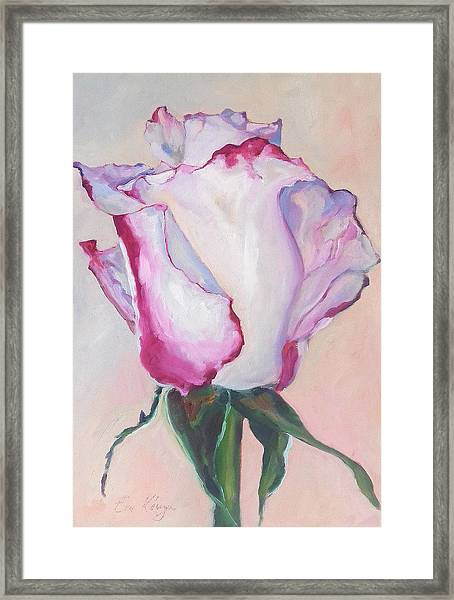 Glamour Roses IIi Framed Print