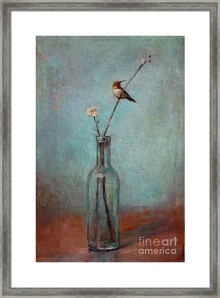 Glass Bottle And Hummingbird Framed Print