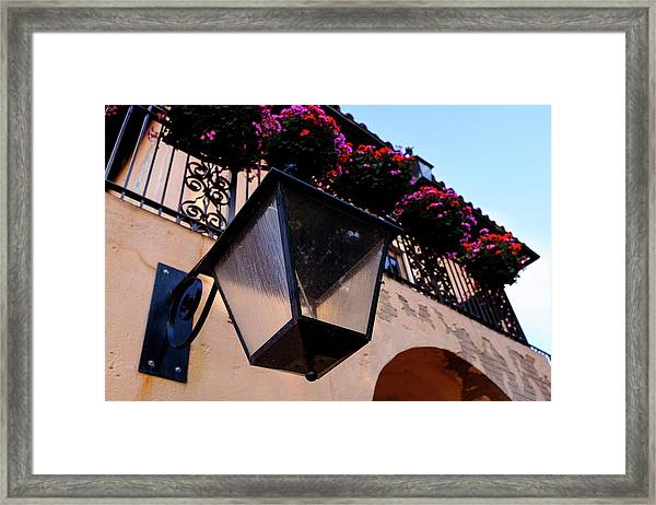 Glass Light Housing With Red Flower Architecture In Saint August Framed Print