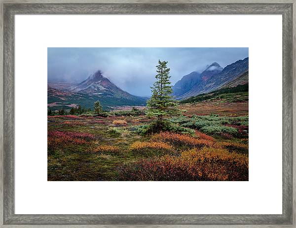 Glen Alps In The Autumn Rain Framed Print