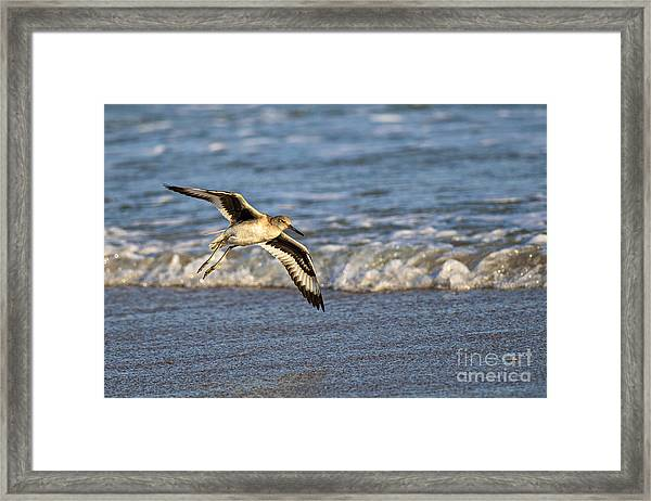 Glide Framed Print