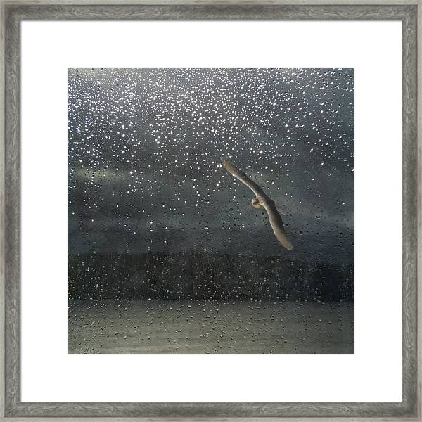 Glistening Tears Framed Print