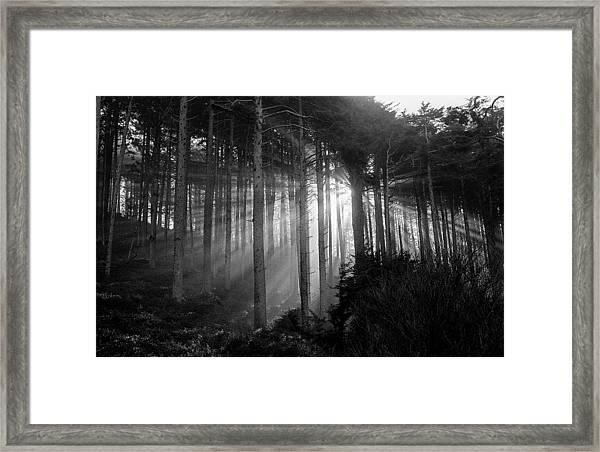 Glory Of Morning Framed Print