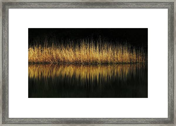 Glow And Reflections At Lakes Edge Framed Print