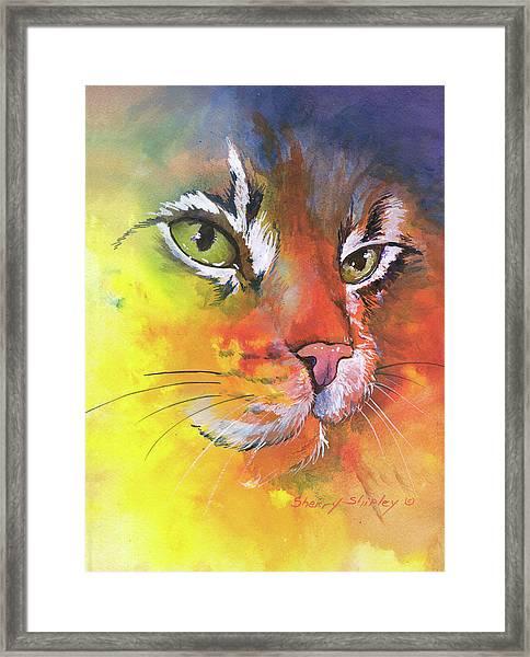 Glow Cat Framed Print