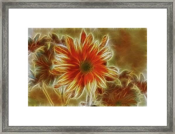Glowing Flower Framed Print