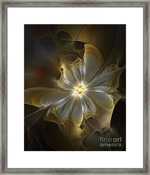 Glowing In Silver And Gold Framed Print