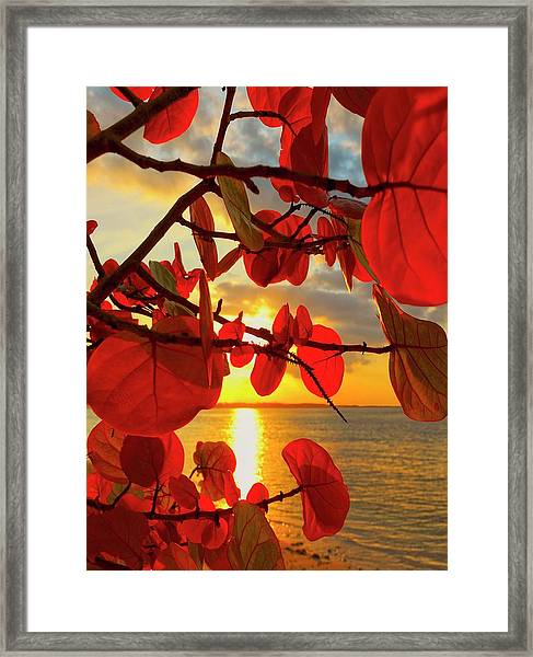 Glowing Red Framed Print