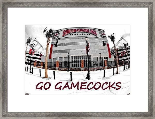 Go Gamecocks Framed Print