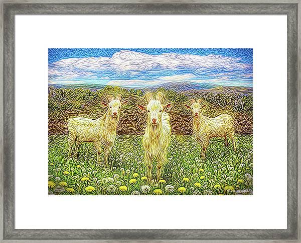 Goats In The Dandelions Framed Print