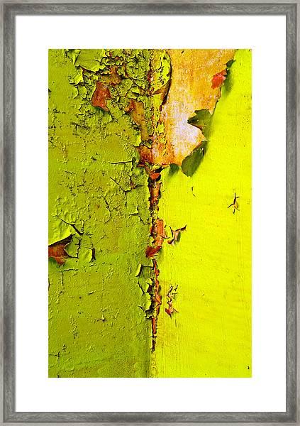 Going Green Framed Print