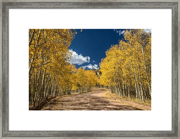 Gold Camp Road Framed Print