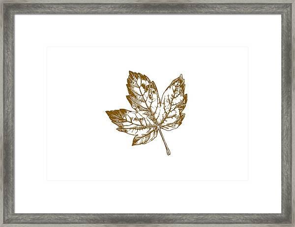 Gold Leaf Framed Print