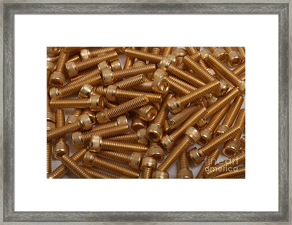 Gold Plated Screws Framed Print