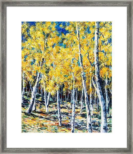 Golden Aspen Framed Print