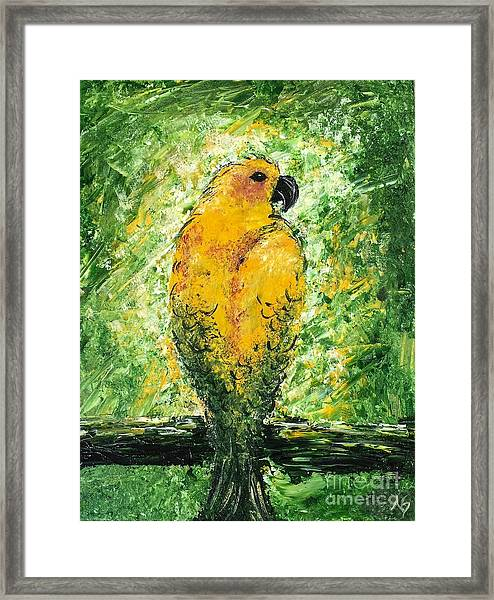 Golden Bird Framed Print