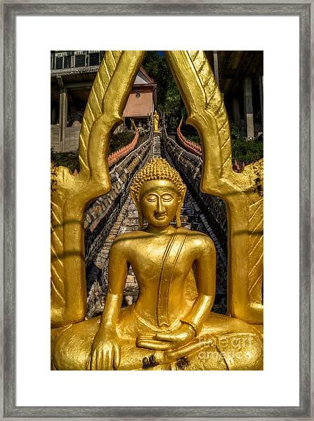 Golden Buddhas Framed Print