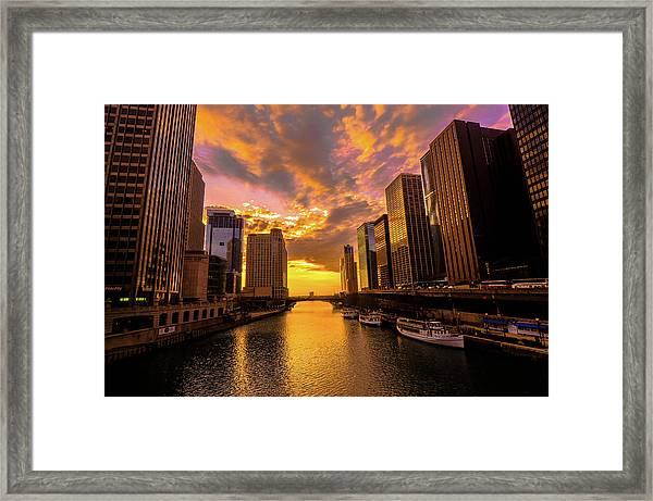 Golden Chi Framed Print