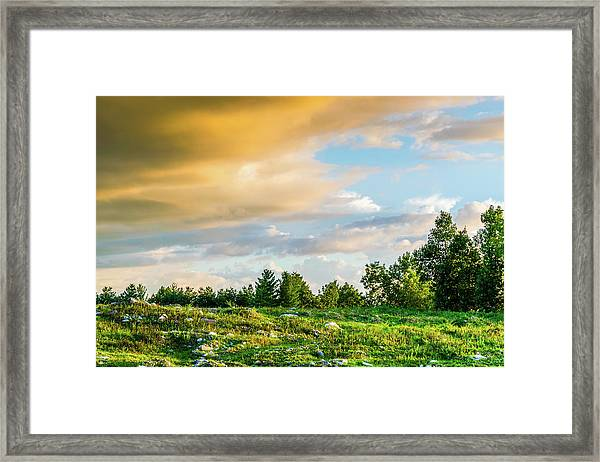 Golden Clouds Framed Print