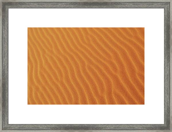 Golden Desert Sands Framed Print