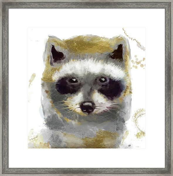 Golden Forest Raccoon  Framed Print