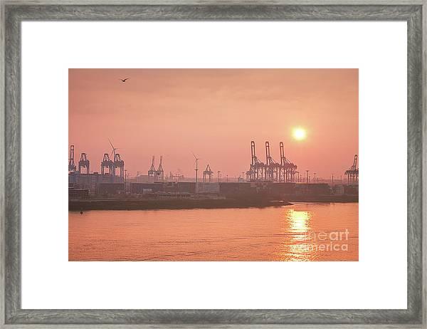 Golden Hour On The Elbe Framed Print