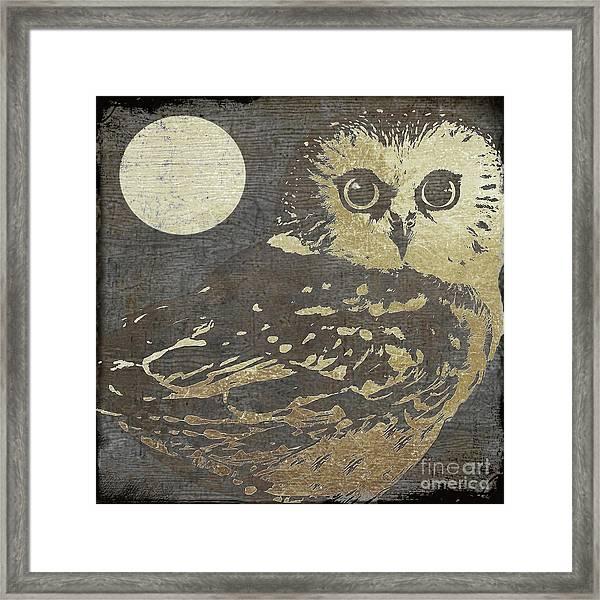 Golden Owl Framed Print