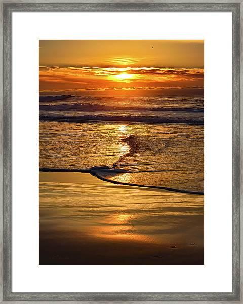 Golden Pacific Sunset Framed Print