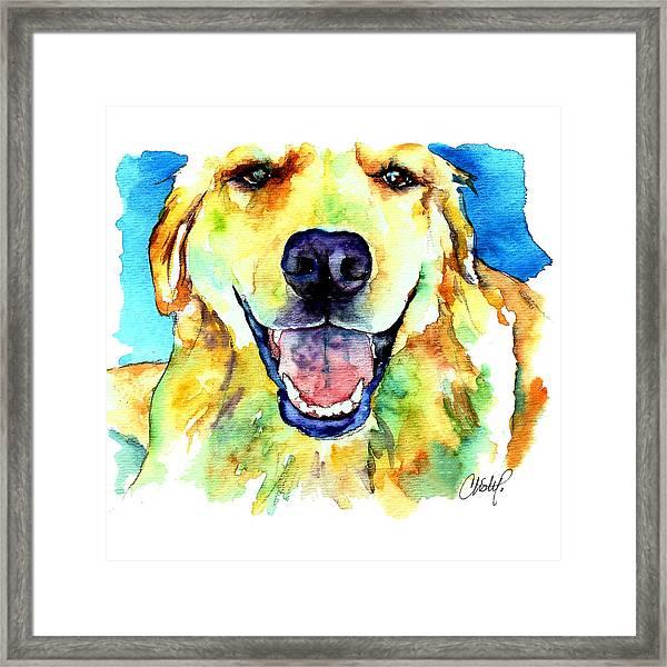 Golden Retriever Portrait Framed Print