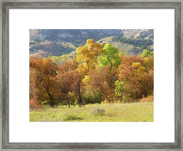 Golden September Framed Print