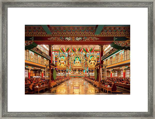 Golden Statues Of Buddha, Bylakuppe, India Framed Print