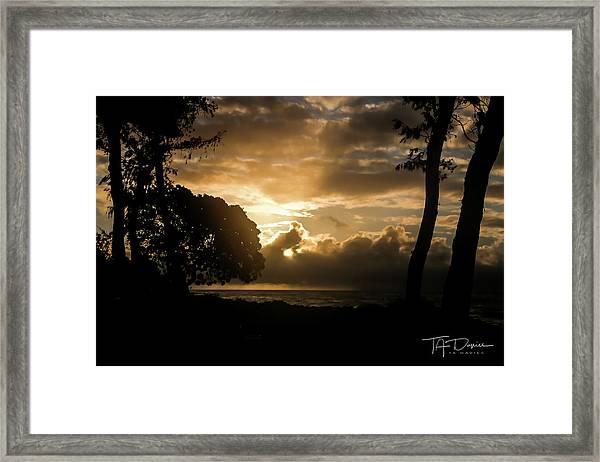 Golden Sun Framed Print