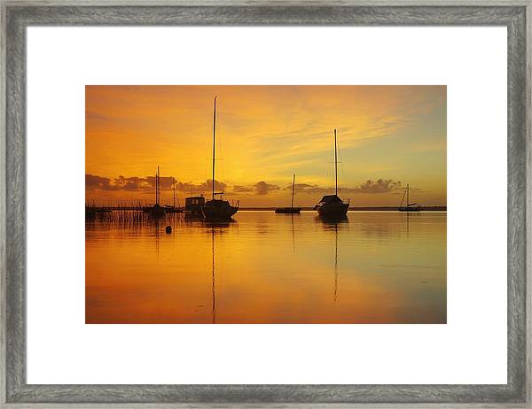 Golden Sunrise At Boreen Point Framed Print