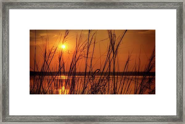 Golden Sunset At The Lake Framed Print