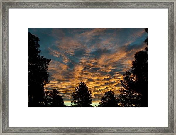 Golden Winter Morning Framed Print