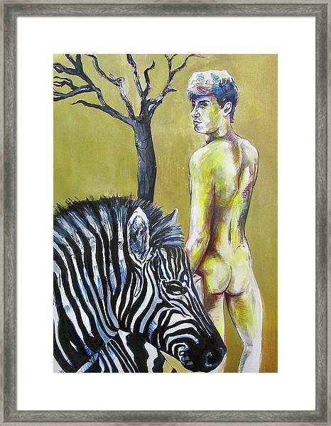 Golden Zebra High Noon Framed Print