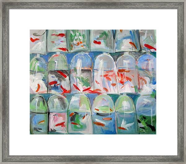 Goldfish Market Framed Print