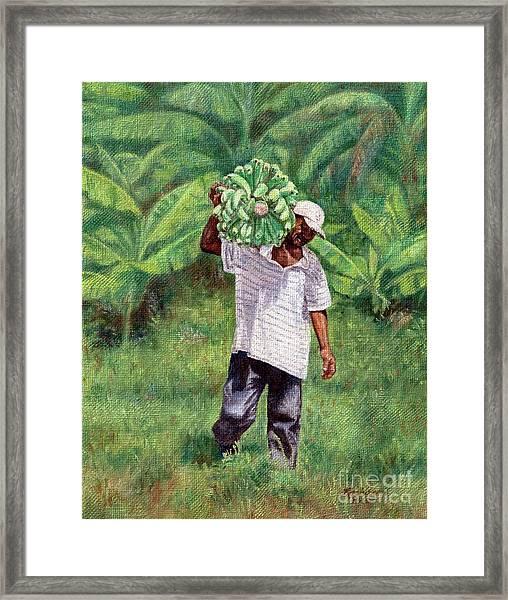 Good Harvest Framed Print