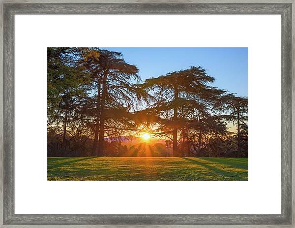 Good Morning, Good Morning Framed Print
