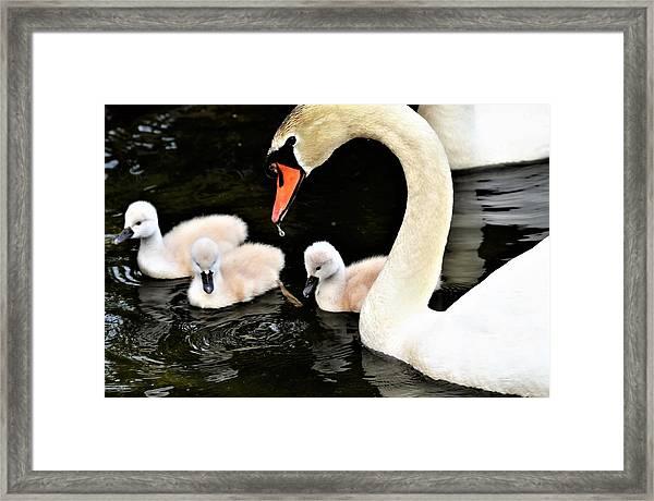 Good Parenting Framed Print