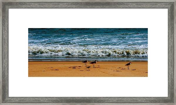 Goodfellas Framed Print