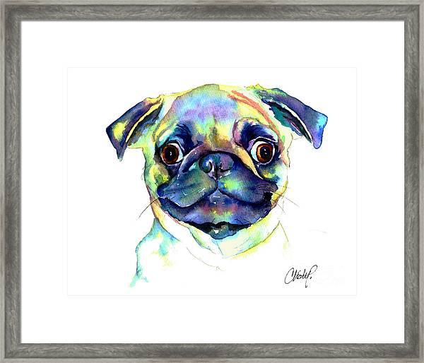 Google Eyed Pug Framed Print