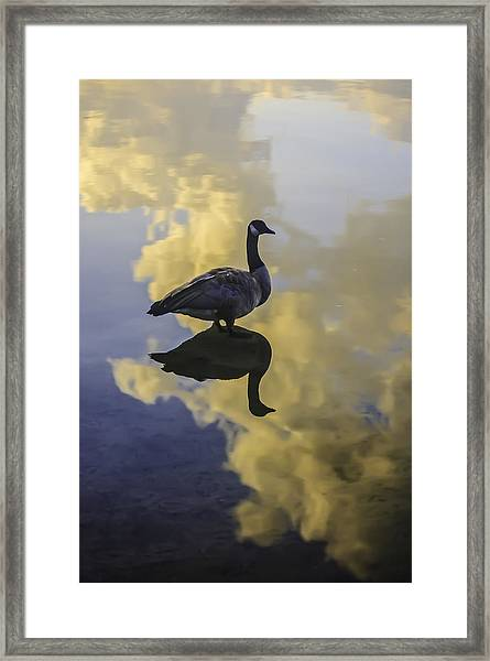 Goose Silhouette 2 Framed Print
