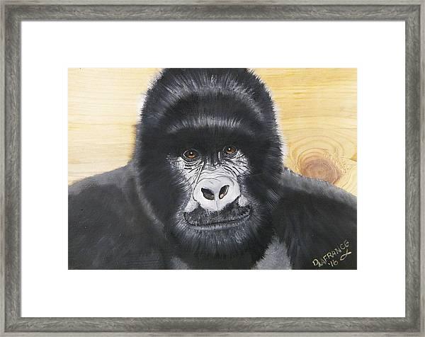 Gorilla On Wood Framed Print