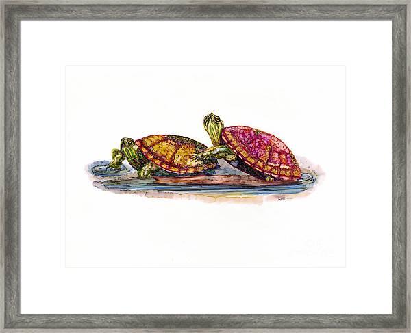 Spring Turtles Framed Print