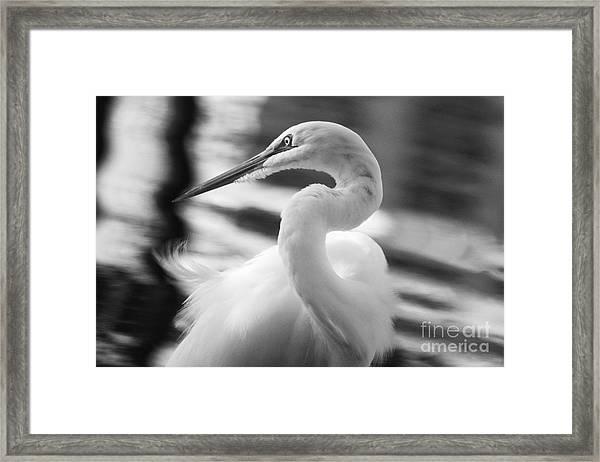 Grace Hunting Framed Print